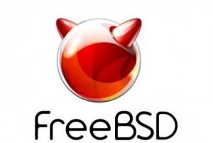 Базовая поддержка FreeBSD